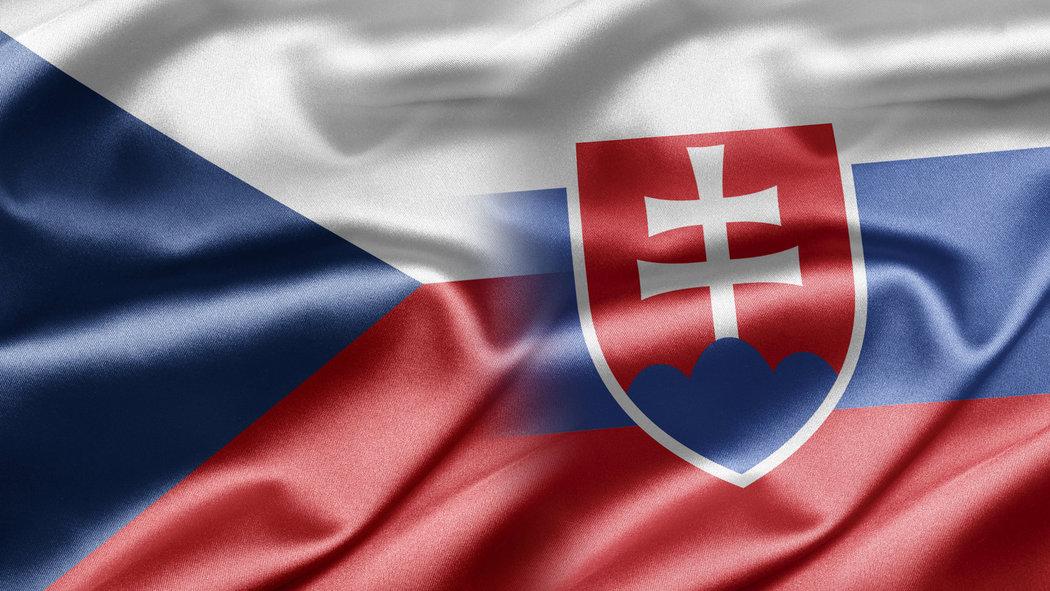 3786844_ceska-vlajka-slovenska-vlajka-v0